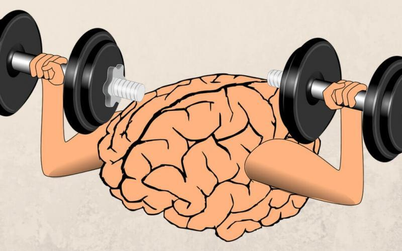 Brain-Muscle Connection