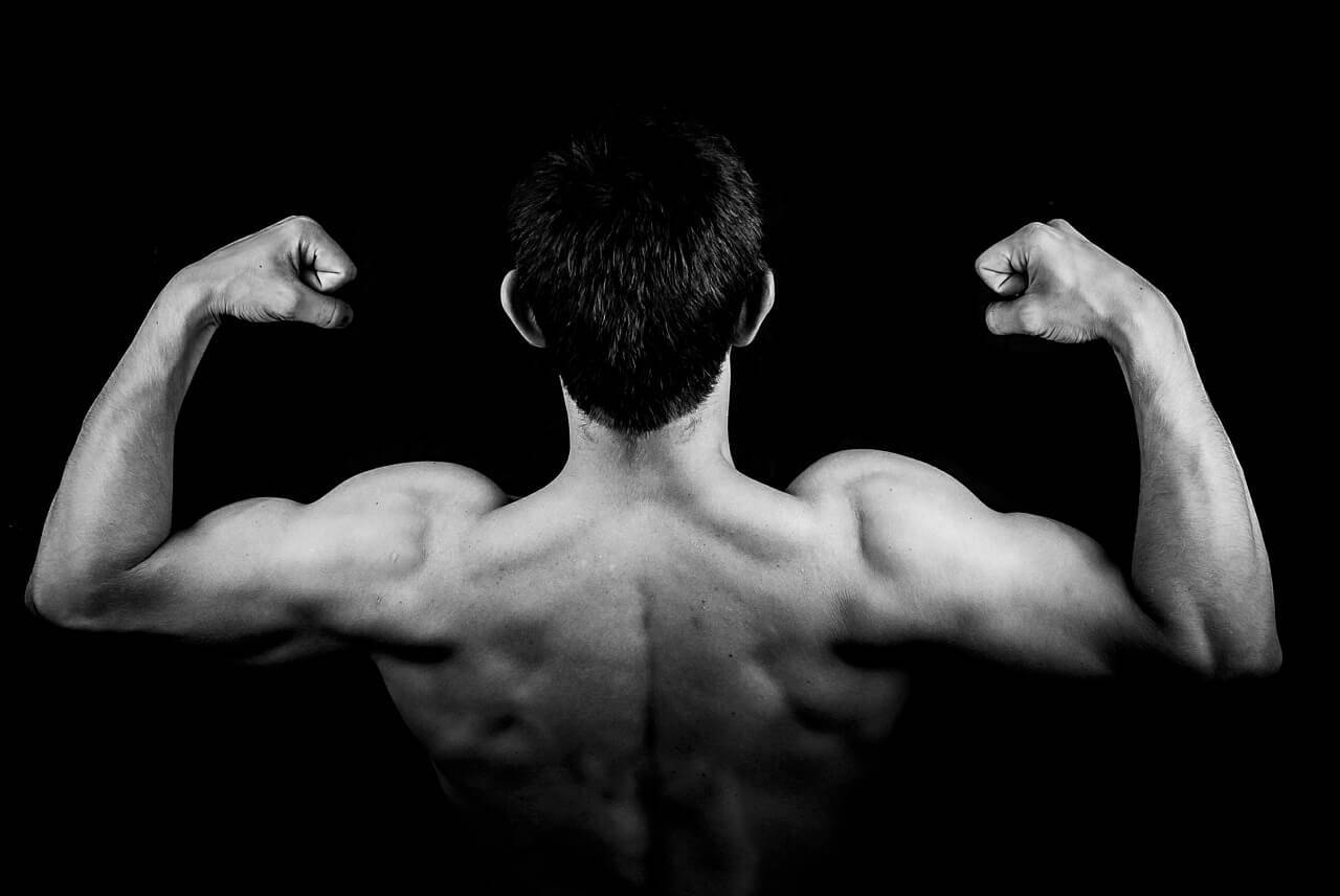 Upper body performance and strength