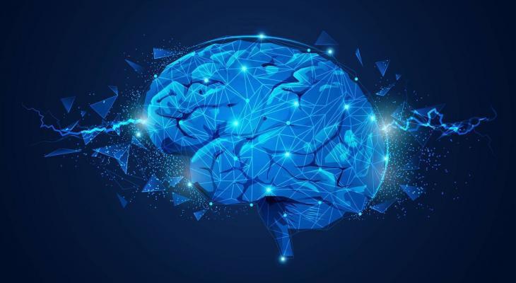 Top Line Nootropic - Mind Lab Pro