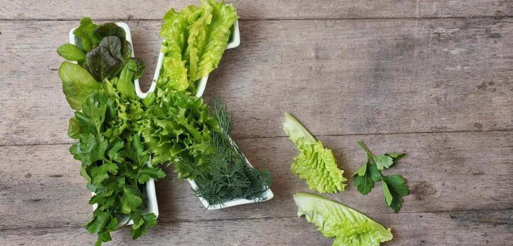 Best Vitamin K Foods