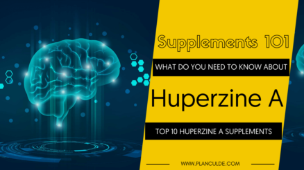 TOP 10 HUPERZINE A SUPPLEMENTS