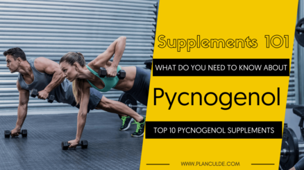 TOP 10 PYCNOGENOL SUPPLEMENTS