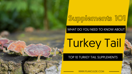 TOP 10 TURKEY TAIL SUPPLEMENTS