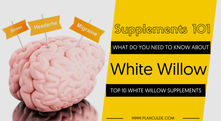 TOP 10 WHITE WILLOW SUPPLEMENTS