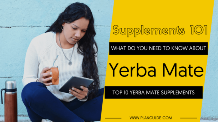 TOP 10 YERBA MATE SUPPLEMENTS
