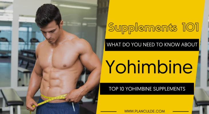 TOP 10 YOHIMBINE SUPPLEMENTS