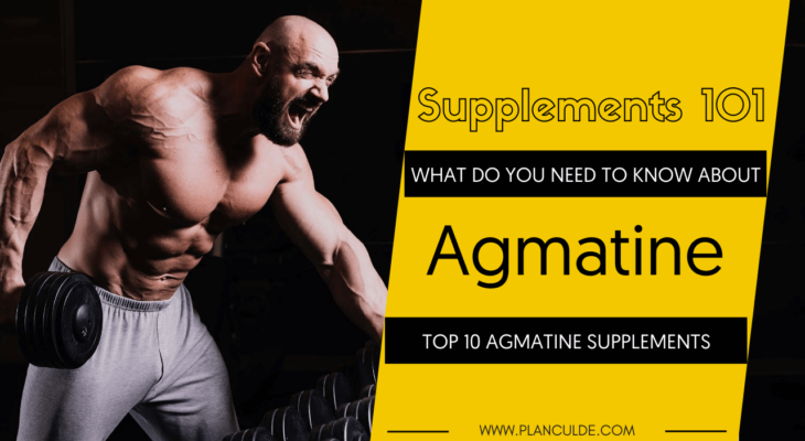 TOP 10 AGMATINE SUPPLEMENTS
