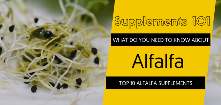 TOP 10 ALFALFA SUPPLEMENTS