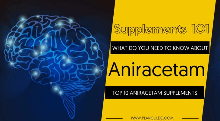 TOP 10 ANIRACETAM SUPPLEMENTS
