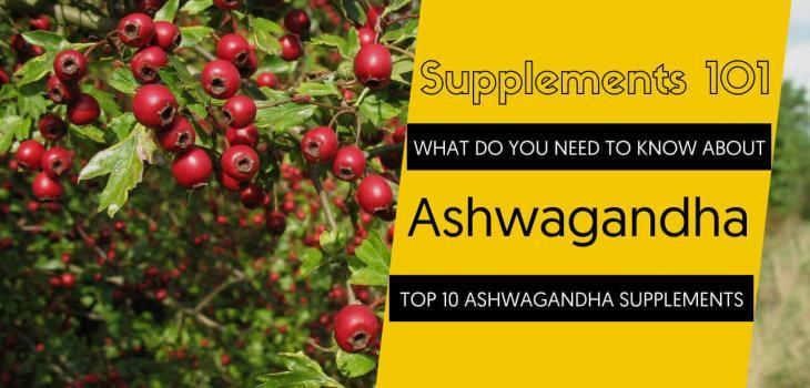TOP 10 ASHWAGANDHA SUPPLEMENTS