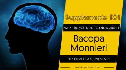 TOP 10 BACOPA MONNIERI SUPPLEMENTS