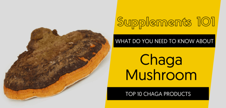 TOP 10 CHAGA PRODUCTS