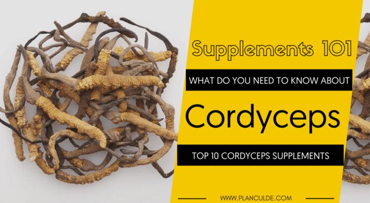 TOP 10 CORDYCEPS SUPPLEMENTS