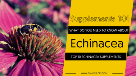 TOP 10 ECHINACEA SUPPLEMENTS