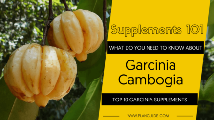 TOP 10 GARCINIA CAMBOGIA SUPPLEMENTS