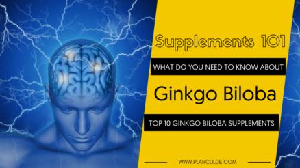 TOP 10 GINKGO BILOBA SUPPLEMENTS