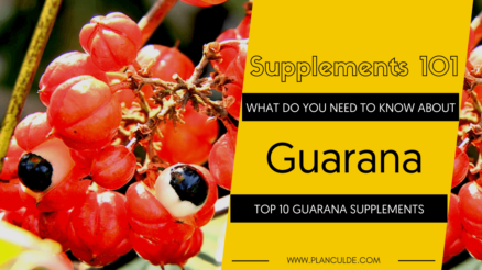 TOP 10 GUARANA SUPPLEMENTS