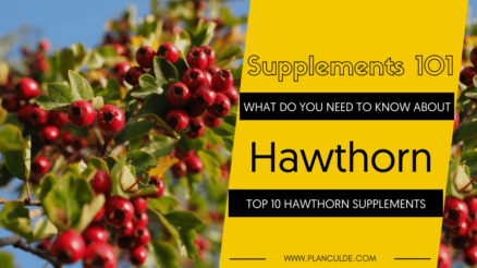TOP 10 HAWTHORN SUPPLEMENTS