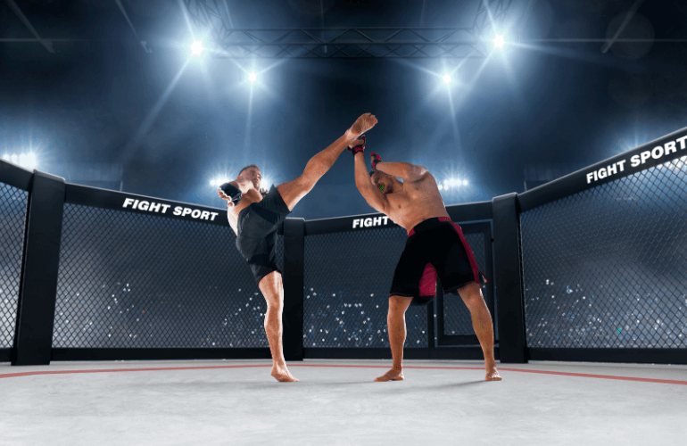 Interesting Facts about MMA
